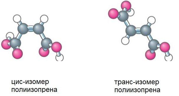 Цис и транс изомеры полизопреновых перчаток