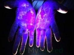 Резидентная микрофлора кожи рук